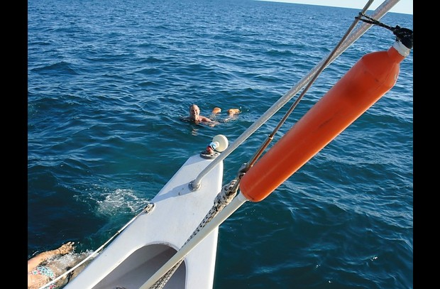 Charter a catamaran for a fun day at sea