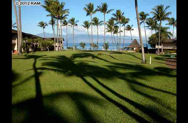 Napili Shores Resort beautiful grounds